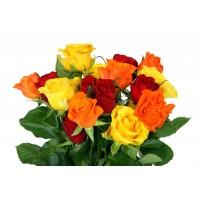Цветы (7)