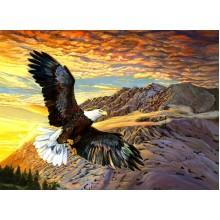 Парящий орел