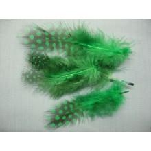 Перо зеленое с горохом 5-10 см