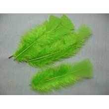 Перо зеленое  8-12см